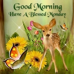 248430-Good-Morning-Have-A-Blessed-Monday