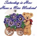 208218-Saturday-Is-Here-Have-A-Nice-Weekend