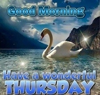 248799-Good-Morning-Have-A-Wonderful-Thursday-Image