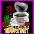 4cd4cc7475abc67bdd3fc71012d49f64--good-morning-happy-thursday-happy-thursday-quotes