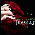 Have-a-beautiful-Tuesday-4