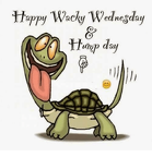 happy-wacky-wednesday-4124942