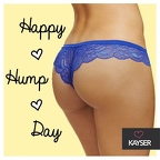 hump day honey 2 26-2014