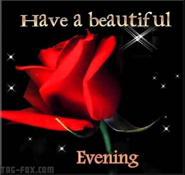 Have-A-BEautiful-Evening-Red-Rose-Good-Evening-Wishes-Picture.jpg
