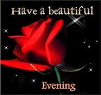 Have-A-BEautiful-Evening-Red-Rose-Good-Evening-Wishes-Picture