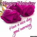 happy-monday-good-morning-images