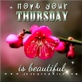 Hope-your-Thursday-is-beautiful
