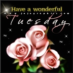Have-a-wonderful-Tuesday-14