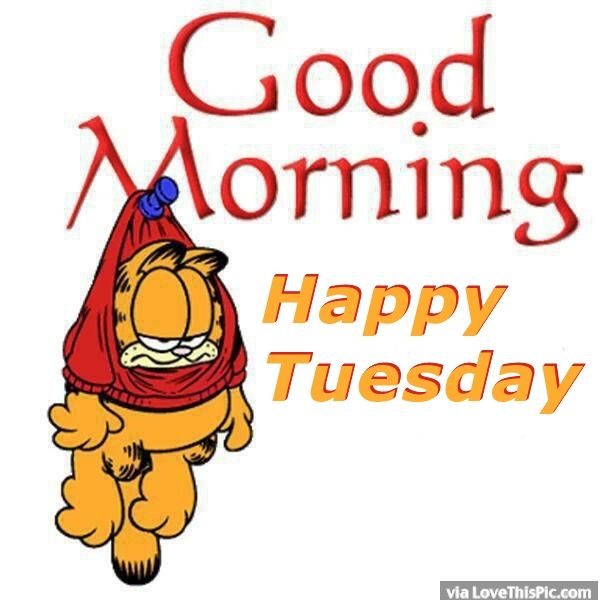 204396-Garfield-Good-Morning-Happy-Tuesday.jpg