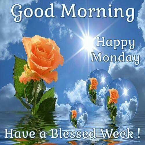 312984-Good-Morning-Happy-Monday-Have-A-Blessed-Week.jpg